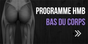 programme HMB bas du corps
