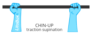 Traction supination ou chin-up