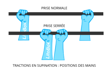 traction supination positions des mains