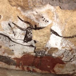 Aurochs grotte Lascaux